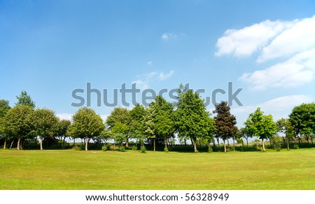 Landscape with trees and blue sky - stock photo