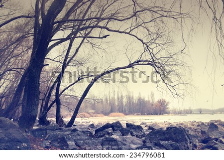 Landscape with trees and stones on river side - stock photo