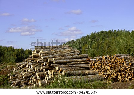 Landscape with two piles of wooden logs - stock photo