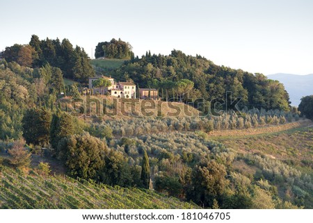 Landscape with vineyard, trees and house in Tuscany Italy at sunset - stock photo