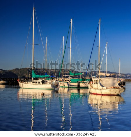 landscape with yachts- destination Wellington, North Island, New Zealand - stock photo