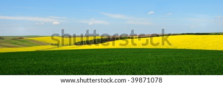 Landscape with yellow rapeseed and green wheat fields against blue sky - stock photo