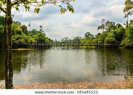 Landscape wooden bridge across water that connects two forests, the wild side of the park. - stock photo