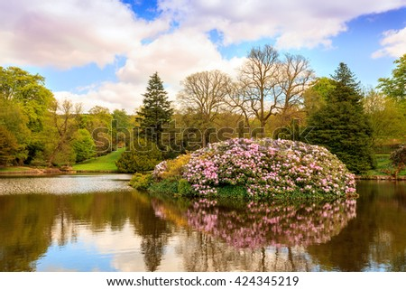 Landscaped English park with lake and rhododendrons in full bloom. - stock photo