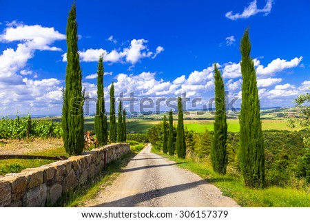Landscapes of Tuscany, alley with cypresses. Italy - stock photo