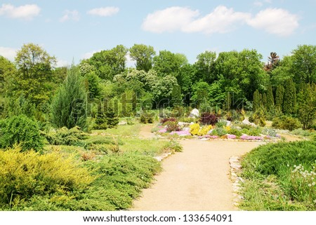 Landscaping, alpine garden with rocks and plants - stock photo
