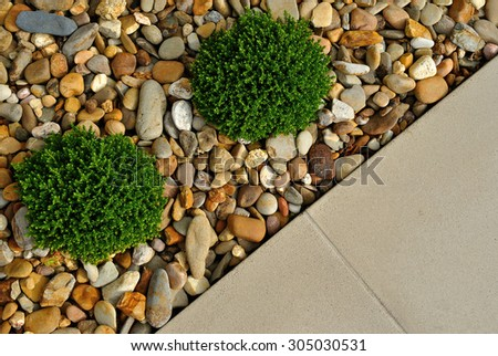 Landscaping combinations of plants, pebbles and paving - stock photo