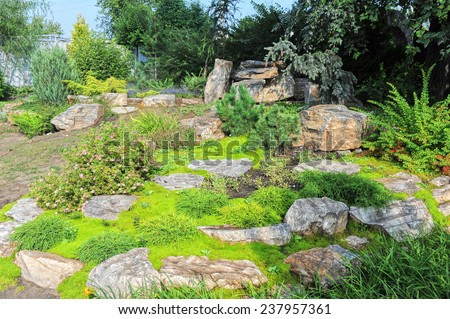 Landscaping in the garden. Different plants - stock photo