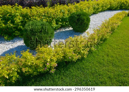 landscaping in the garden, shrub and stone