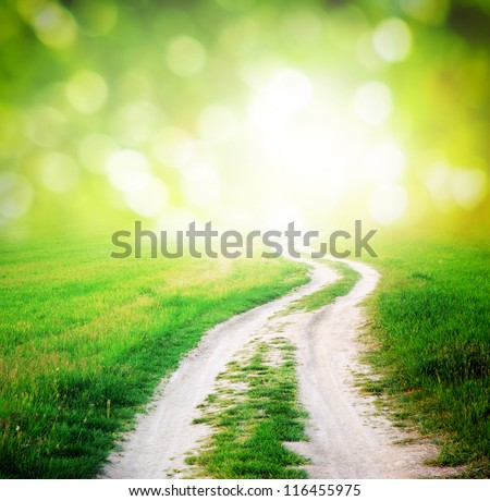 Lane in meadow and sunlight. Nature design. - stock photo