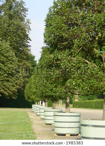 Lane of laurels in park of Sans Souci palace park in Potsdam, Germany. - stock photo