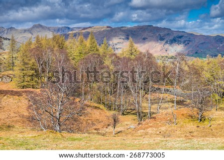 Langdales from Holme Fell Cumbria English Lake District - stock photo