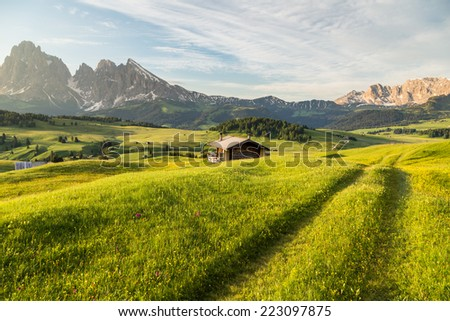 Lankoffel mountain range. View from Seiser Alm, Dolomites, Italy. - stock photo
