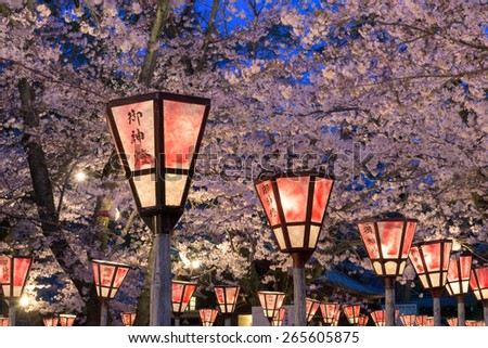 "Lantern in Sakura Festival at Mishima Shrine, Shizuoka, Japan. The lantern reads ""The light of God"" - stock photo"