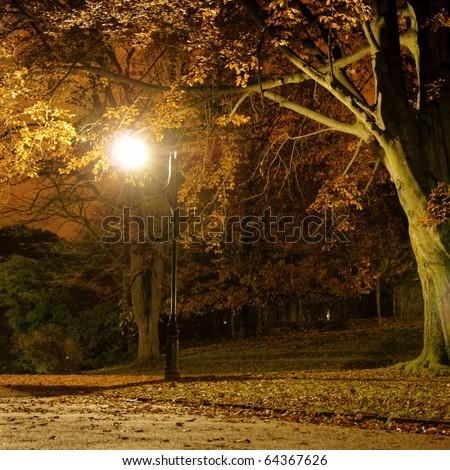 Lantern in the park during the autumn season at night - stock photo