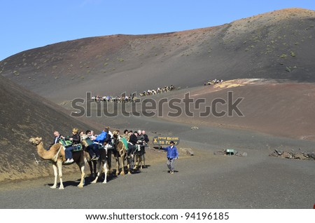 LANZAROTE, SPAIN - JANUARY18: camel riding for tourists to volcanic cones is a tourist attraction in the Timanfaya Nationalpark on the Canary Island- on January 18, 2012 in Lanzarote, Spain - stock photo