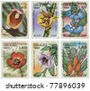 LAO - CIRCA 1984: A set of six stamps printed in Lao illustrating species of plants, circa 1984. - stock photo