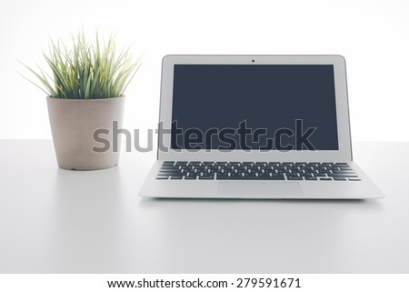 Laptop and flower pot - stock photo