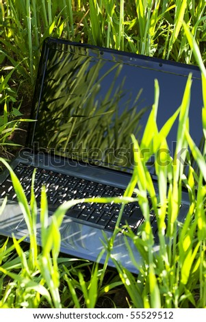 laptop in green grass - stock photo