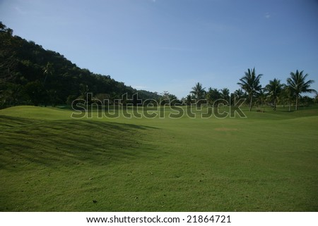 large areas of grass under the blue sky