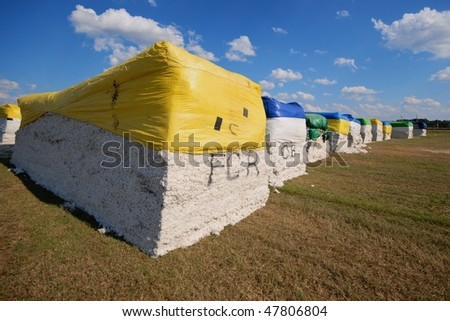Large bales of raw cotton