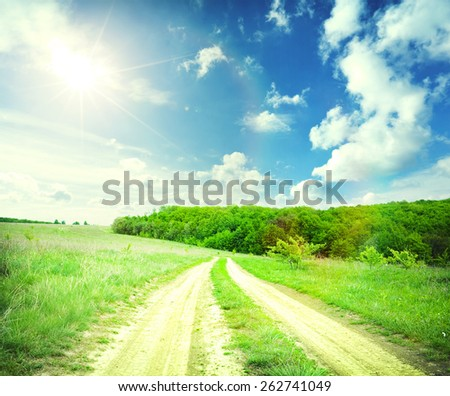 Large beautiful spring the field with a distant kind on a forest - stock photo