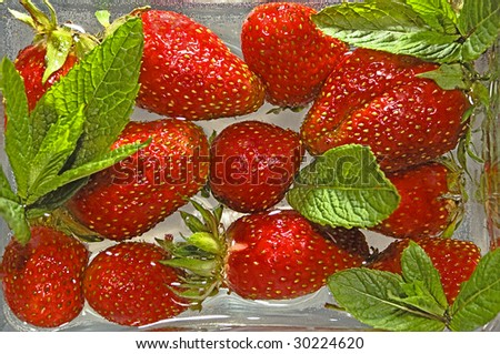 Large berries of a strawberry with leaflets in water - stock photo