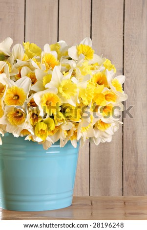 Large bouquet of yellow daffodils. - stock photo