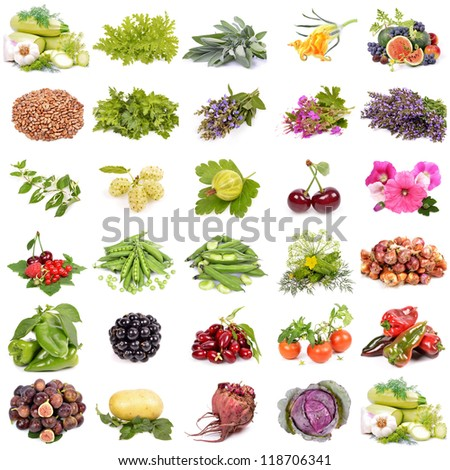 large collection of fruit, berries vegetables ,organic agriculture, isolated on a white background - stock photo