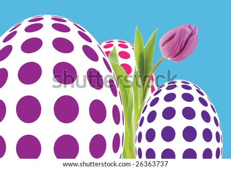 Large dramatic group of Op Art eggs illustrated with pink, blue & purple spots on white eggs, pink Tulip (photograph) emerging from this group all on blue background - stock photo