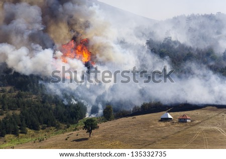 Large fire on Mount Zlatibor. A fire swept through a forest and meadow. Log cabins are in danger. Thick smoke spread. - stock photo