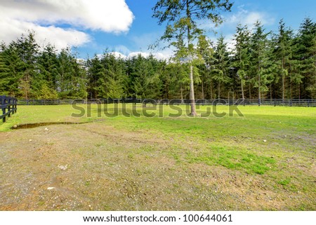 Large green Horse farm pasture with black fence and forest. - stock photo