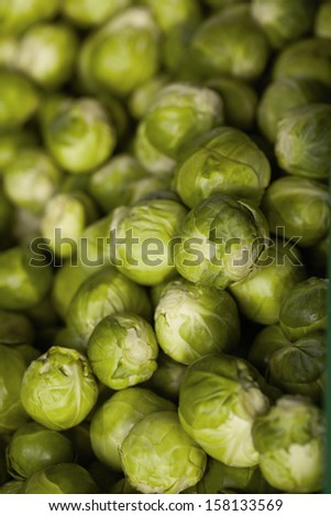 Large group of brussels sprouts