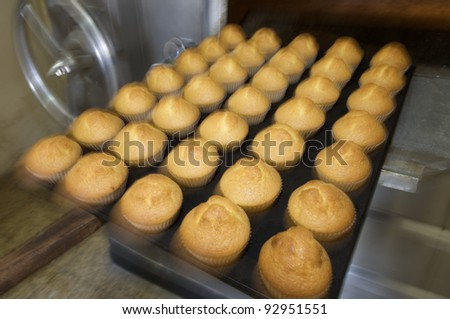 large group of freshly baked muffins - stock photo