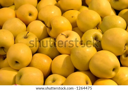 Large group of yellow juicy stacked apples
