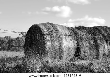 Large hay bales in countryside at Barossa Valley, South Australia. Black and White. - stock photo