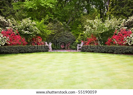 Large lawn in the park - stock photo