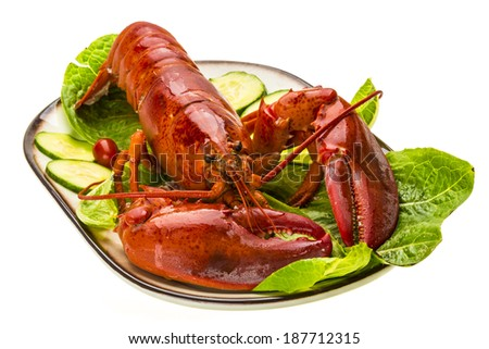 Large Lobster - stock photo