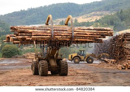 Large wheeled front end log loader stock photo 134853440 for Mill log