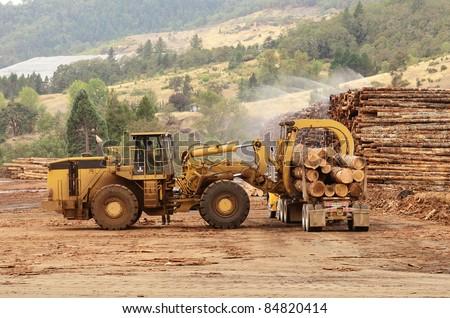 Large log loader unloading a log truck in the log yard at a conifer log mill near Roseburg Oregon - stock photo