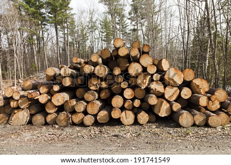 Large Lumber Pile from deforested rural area. - stock photo