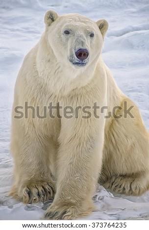 Large male polar sitting on Canadian Arctic tundra,computer art - stock photo