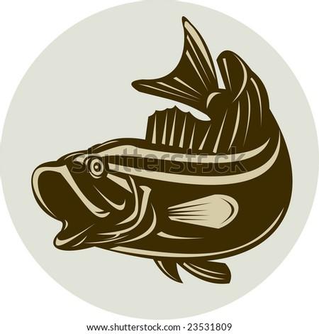Large mouth bass - stock photo