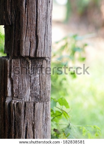 large old aged natural color and wood surface texture of a hardwood pillar of a country farm house with green leaves environment