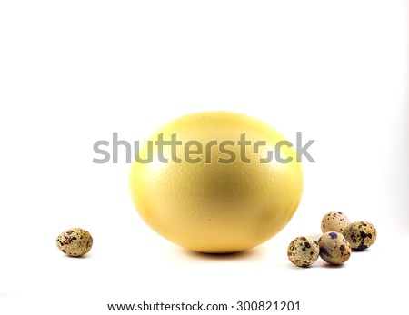 Large Ostrich, quail's eggs  - stock photo