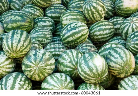Large pile of watermelons in the market