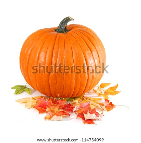 Large pumpkin centered on a white background surrounded by leaves - stock photo