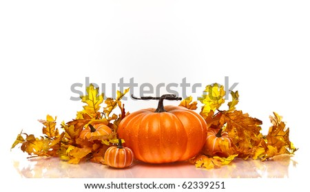 Large pumpkin centered on a white background surrounded by leaves and small pumpkins. - stock photo