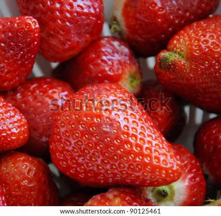 Large red strawberries shown up close - stock photo