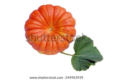 Large Ripe Pumpkin with Leaf Isolated on White Background - stock photo